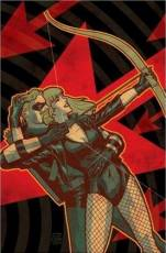 Couverture de l'album GREEN ARROW BLACK CANARY The Wedding Album