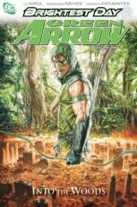 Couverture de l'album GREEN ARROW Into the woods