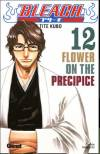 bande-dessinée, BLEACH #12, Flower on the Precipice