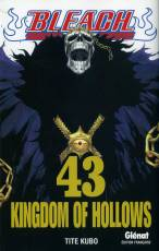 Couverture de l'album BLEACH Tome #43 Kingdom of hollows